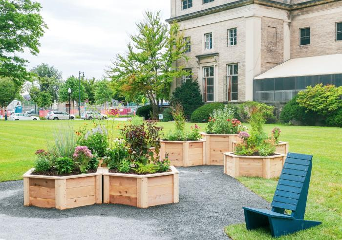 The Hive Garden, a first-of-its-kind pollinator garden at MIT, recently opened on Saxon Lawn.Photo: Effie Jia