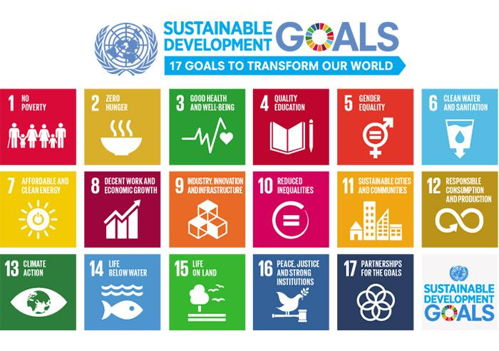 The United Nations' SDG's