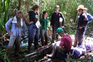 Researchers have found one of the last undisturbed tropical peat forests, in the nation of Brunei on the island of Borneo. Photo: Courtesy of the researchers