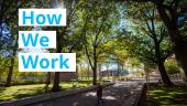 "image of green trees and campus walkway with ""HOW WE WORK"" typed over"