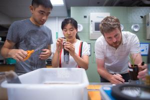 MIT Assistant Professor David Des Marais (right) is collaborating with Caroline Uhler (not pictured) of EECS and IDSS to find the genetic foundations of plant tolerance to the stresses of heat and drought.               Photo...